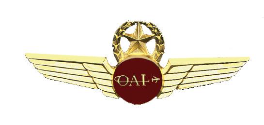 Descripción: Formulario de asistentes de vuelo de avión de Omni Air International. Oklahoma, Estados Unidos. 1