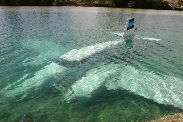El avión se estrelló en una isla rocosa en medio del Mekong y se fue al fondo del río.