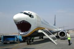 飛行機、サメ
